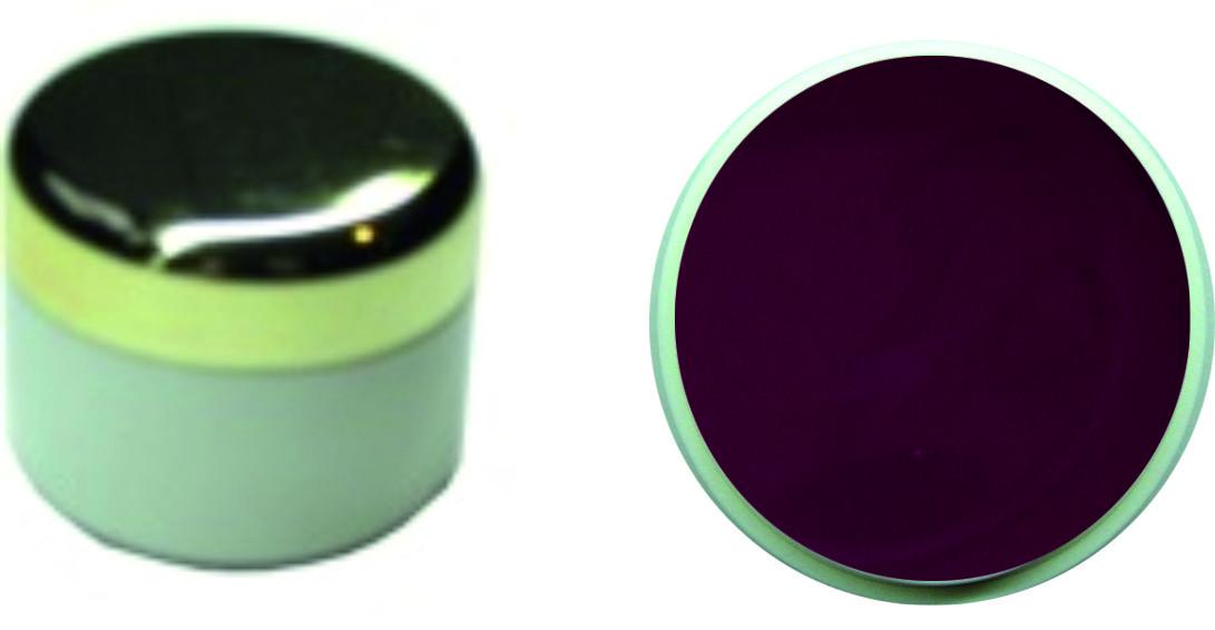 Farbgel Darl Plum 4ml