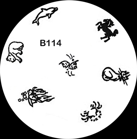 Stamping Schablone B114